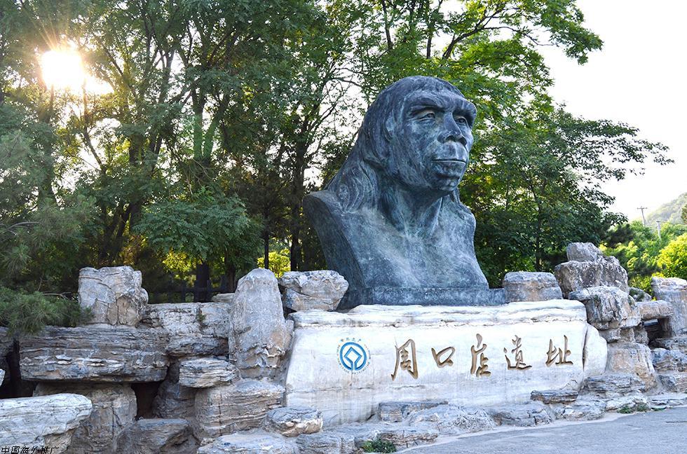peking-man