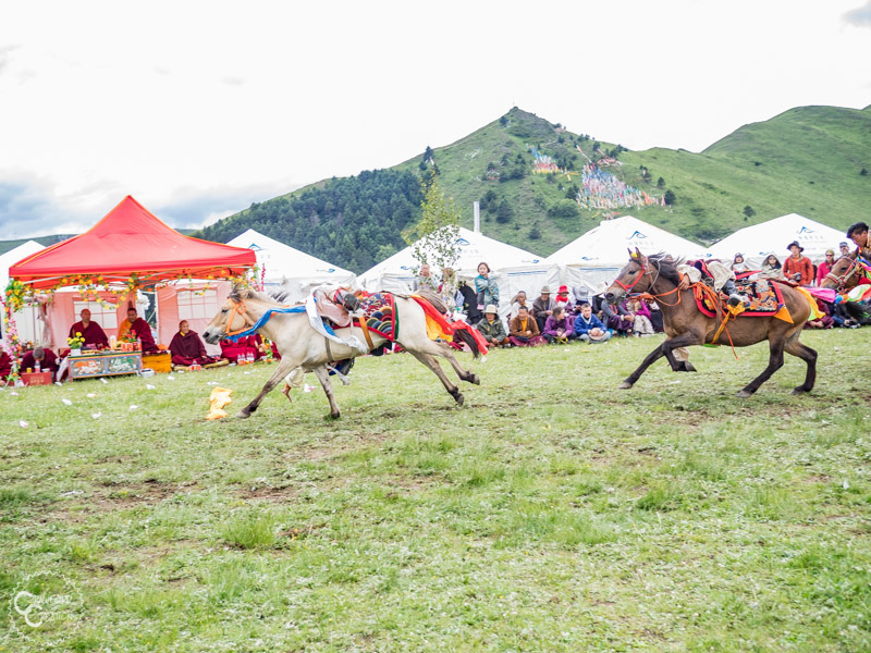 tagong-horse-festival