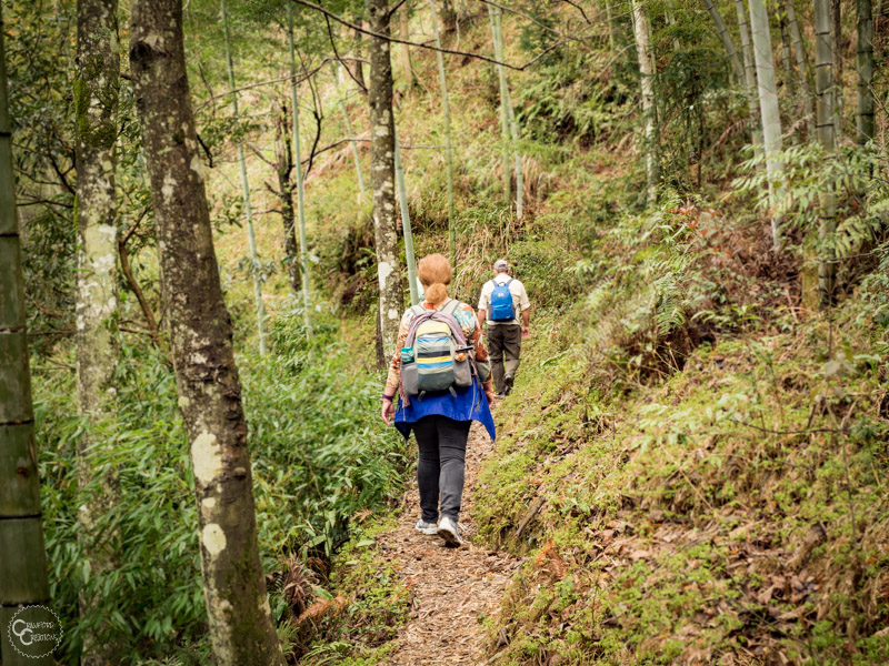 longji-rice-terraces-hiking