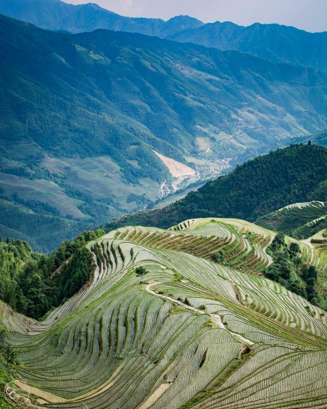 pingan-rice-terraces